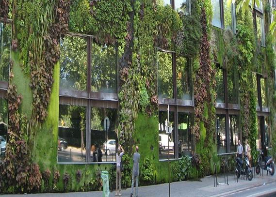 green-wall-systems