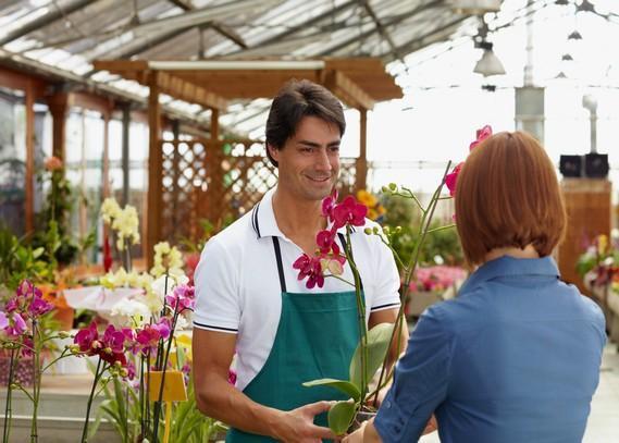 indoor-plants-suppliers