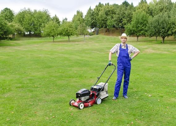 lawn-mowing-professional