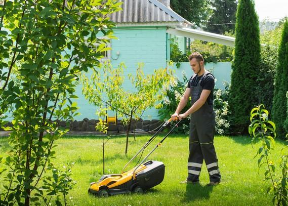 lawn-mowing-experts