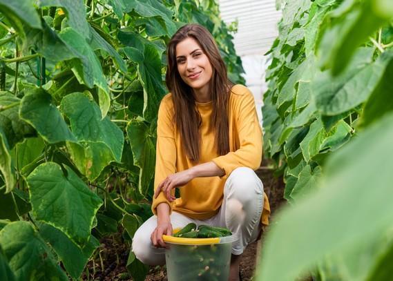 organic-gardening-experts